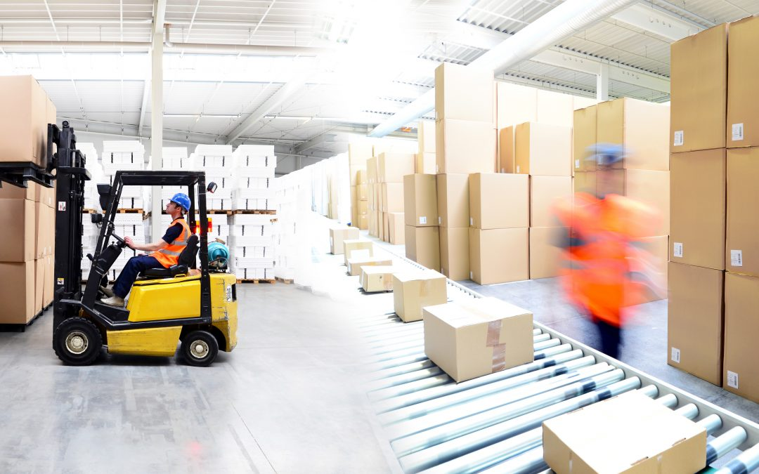 Zebra Technology that will Have Your Warehouse Ready for the Future